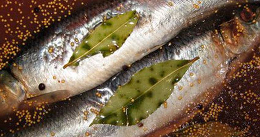 Перед посолом рыбу моют в чистой холодной воде. Хамсу, кильку, плотву солят без потрошения, у скумбрии, чируса, крупной ставриды удаляют жабры и внутренности, не разрезая брюшка. У прочих рыб массой более 1–1,5 кг удаляют жабры, внутренности и делают разрез вдоль спинки. Далее рыбу обваливают в соли, укладывают брюшком кверху в чистую кадку или бочку и […]